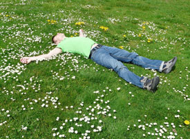 young man asleep in field of daisies